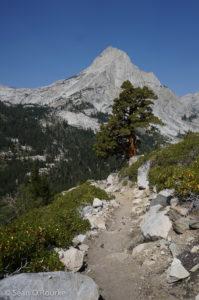 Langille across Le Conte Canyon