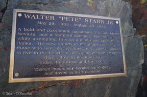 Starr plaque