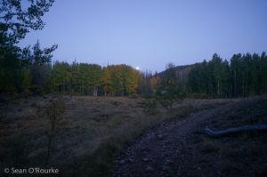 Moonset over aspens